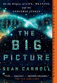 Livres Couvertures de The Big Picture: On the Origins of Life, Meaning, and the Universe Itself