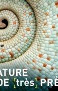 Livres Couvertures de La Nature vue de (très) près