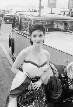 Livres Couvertures de STARS AND CARS OT THE 50S