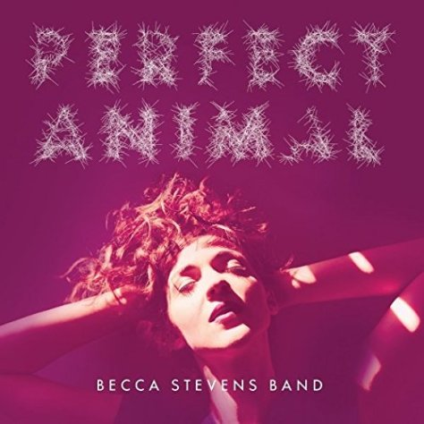 Becca Stevens Band-Perfect Animals-CD-FLAC-2015-BOCKSCAR Download