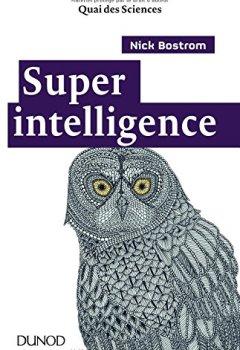 Livres Couvertures de Superintelligence