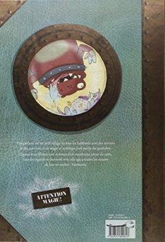 Livres Couvertures de SORCIERES SORCIERES BD T01: Le mystère du jeteur de sort