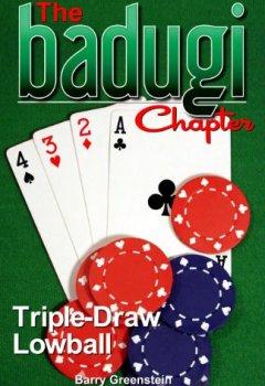 Livres Couvertures de The Badugi Chapter (English Edition)