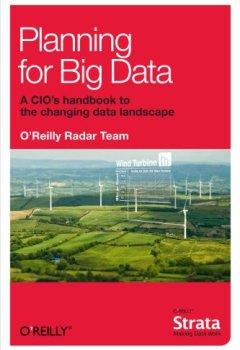 Livres Couvertures de Planning for Big Data