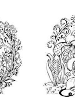 Livres Couvertures de Mein Frühlingsspaziergang: Ausmalen und durchatmen