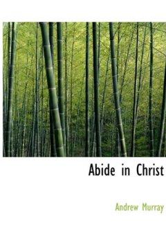Buchdeckel von Abide in Christ