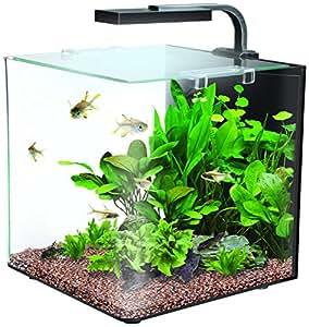 Interpet Nano LED Complete Aquarium Fish Tank Kit   12 Litre: Amazon