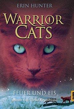 Buchdeckel von Feuer und Eis (Warrior Cats 2)