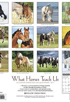 Livres Couvertures de What Horses Teach Us 2017 Calendar: Life's Lessons Learned from Our Equine Friends