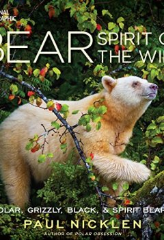 Livres Couvertures de Bear: Spirit of the Wild