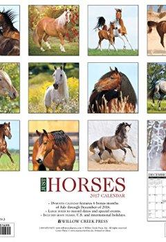 Livres Couvertures de Just Horses 2017 Calendar
