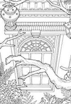 Livres Couvertures de The Night Voyage: A Magical Adventure and Coloring Book