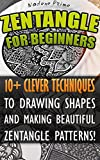 Zentangle For Beginners: 10+ Clever Techniques To Drawing Shapes and Making Beautiful Zentangle Patterns!: (Graphic Design Drawing, Crafts Hobbies, and ... for beginners, Sketching, Pencil drawings)