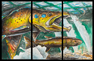 ed anderson art brown trout