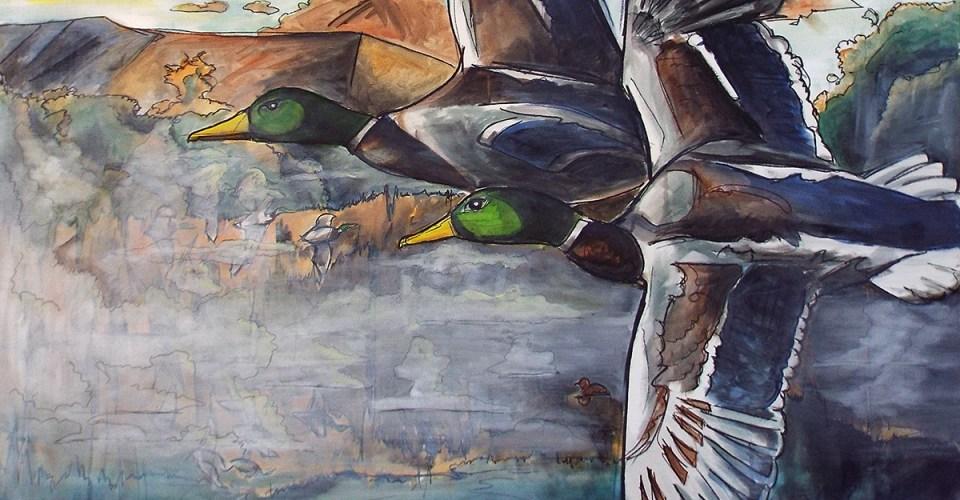Flying drake mallards, Ed Anderson Art