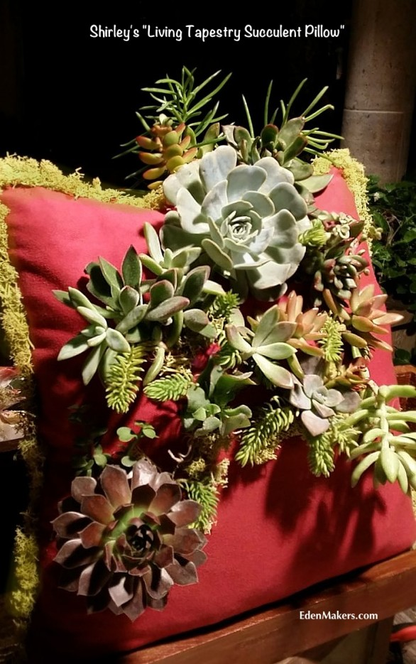 close-up-shirley-bovshows-living-tapestry-succulent-pillow-edenmakers-blog