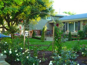 Front yard English garden with gravel patio, arch and roses