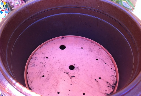Garden_Container_Planter_Insert_With_Drain_Holes