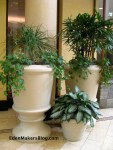 Large_Indoor_Planters_Separate_Different_Spaces