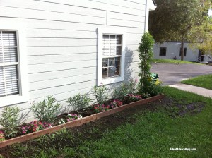 Home-and-Family-Show-Front Yard-Makeover-Before-Shirley-Bovshow