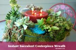 Instant-Succulent-Centerpiece-wreath-designed by Jenny Peterson as seen on shirley Bovshow's Garden World Report Show