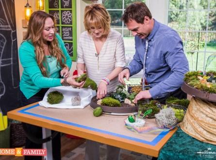 Miniature-garden-home-and-family-show-emerald-isle-shirley-bovshow-cristina-ferrare-mark-steines