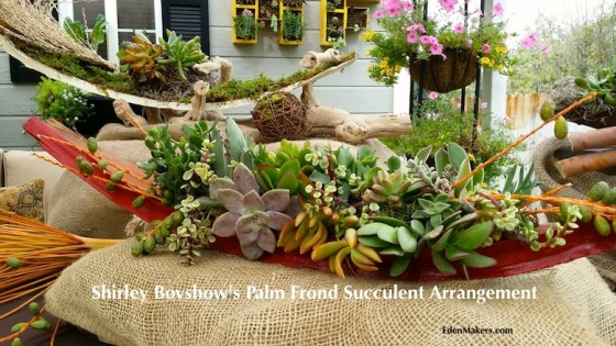 close-up-succulent-plant-combination-red-palm-frond-containers-shirley-bovshow-designer-edenmakers-blog