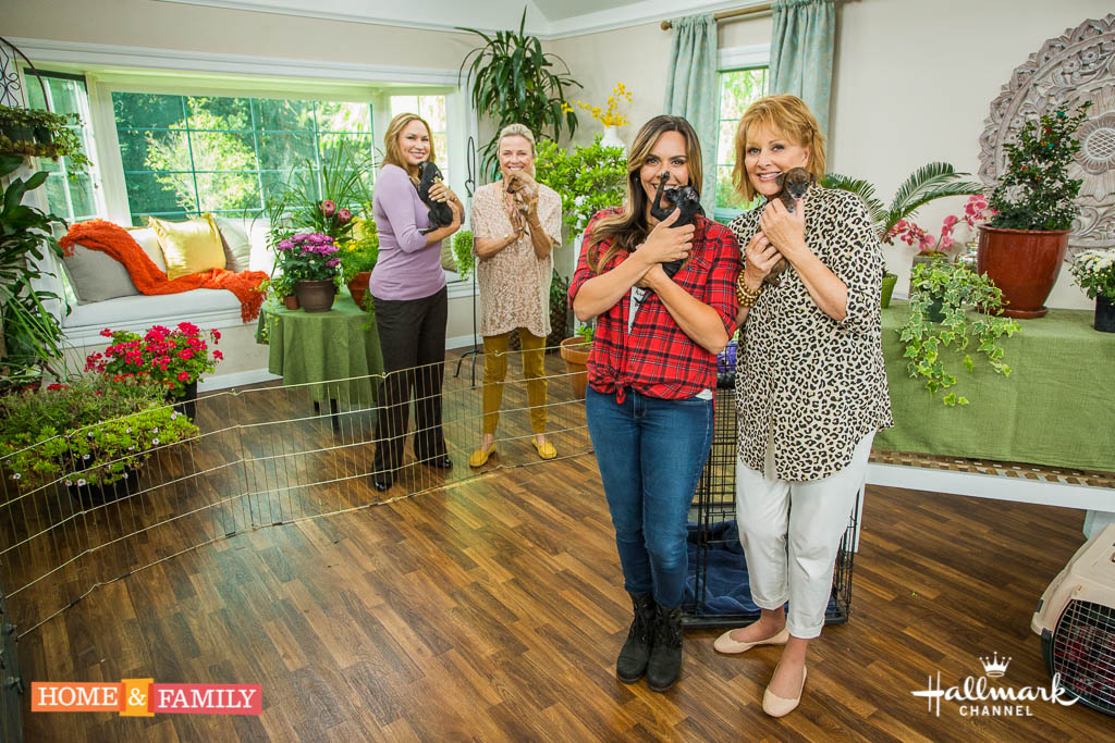Home and Family 4020 Final Photo Assets