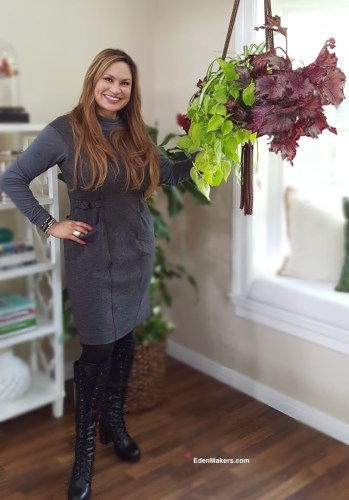 garden-designer-shirley-bovshow-instant-indoor-hanging-planter-design-home-and-family-show