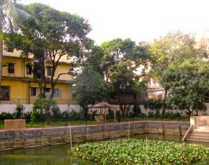 Pond in landscape design by Tarek Rahman in Bangladesh