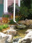 epcot-rain-garden-downspout-empties-to-swale-edenmakersblog