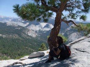 California, 2008