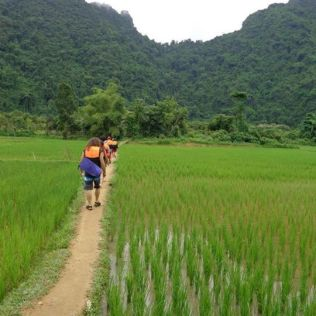 Walking through the Rice Fields in Laos