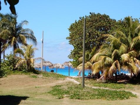 Cuba Blog 14