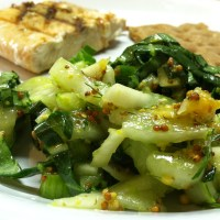 Crunchy Fennel and Pak Choi Slaw with Citrus Mustard Vinaigrette