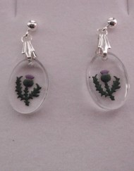 Hand Oval Thistle Oval Earrings
