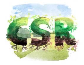 CSR-Report für Unternehmen