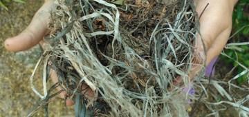 thumbnail nido de plástico