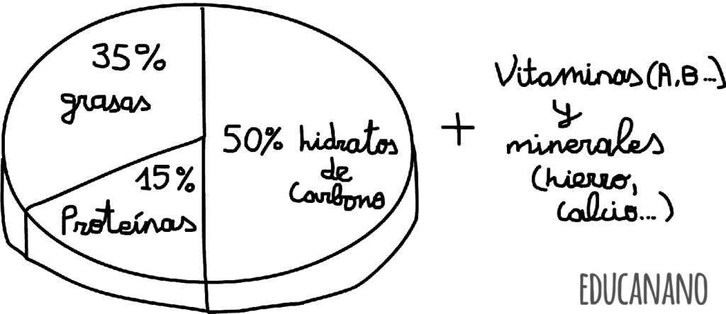 013-Porcentajes-que-nuestro-cuerpo-necesita