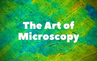 The Art of Microscopy
