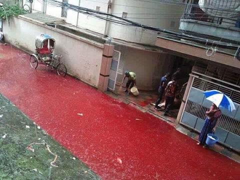 blood-flowing-in-the-streets-4.jpg