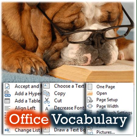 Microsoft Office Vocabulary