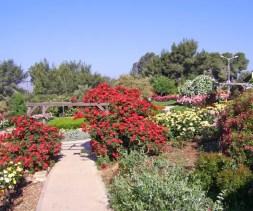 Kibbutz in Israel