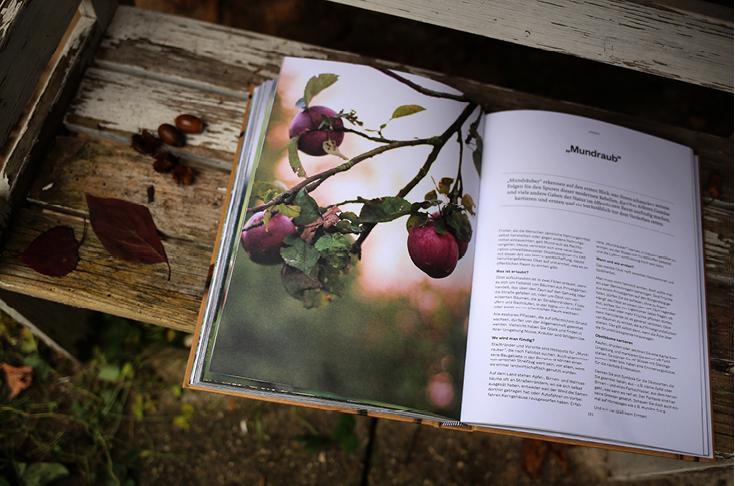 Buchtipp, 365 Tage Natur, Edel-Verlag