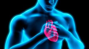 Cada vez más cerca de curar un corazón roto