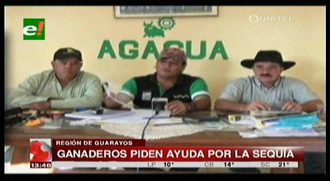 Ganaderos de Guarayos piden alimento a la Gobernación por sequía