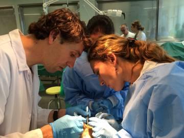Los cirujanos con experiencia buscan reducir su margen de error practicando con cadáveres.