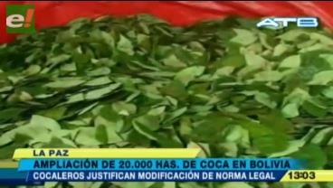 Cocaleros respaldan ampliación de hectáreas de coca legal