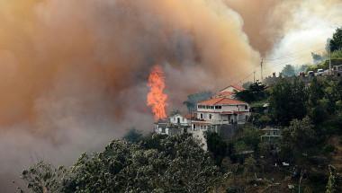 El fuego ha provocado escenas dantescas en la turística de Madeira (JOANA SOUSA/AFP/Getty Images).