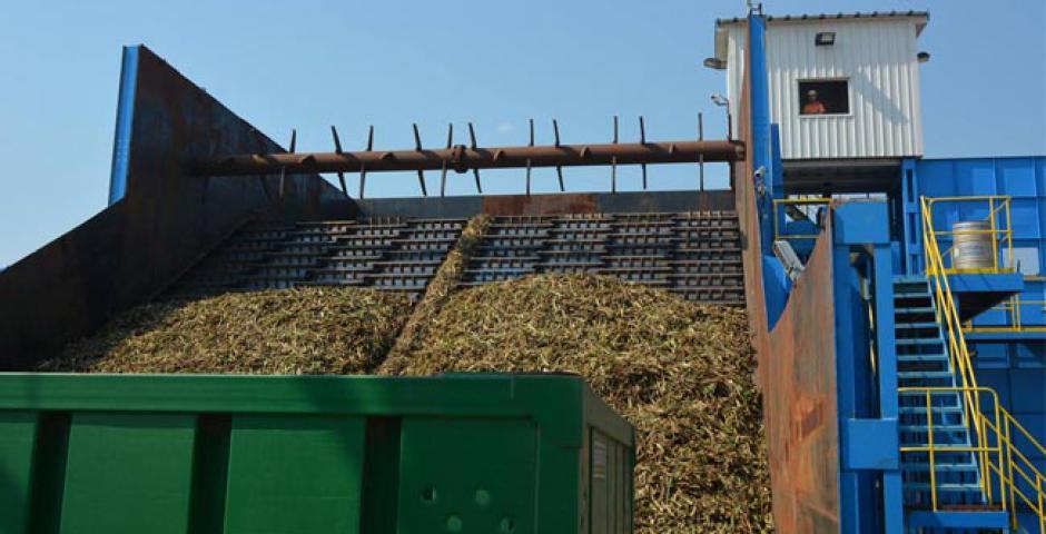 La molienda durará 22 días y se estiman cosechar al menos 78.000 toneladas de caña